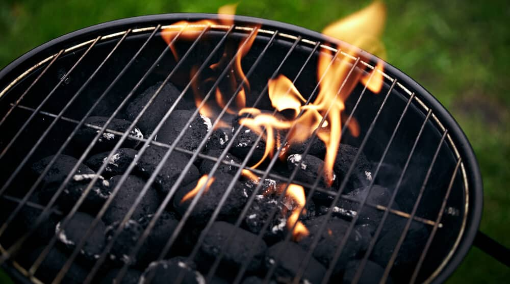 Best Park Style Charcoal Grill Buying Guide - reviewedbest.com