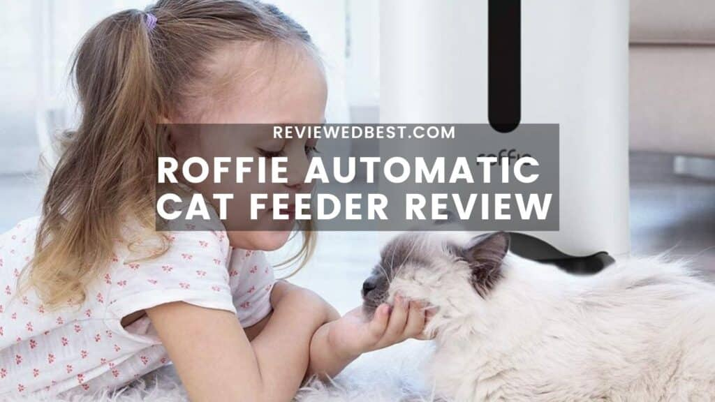 Roffie Automatic Cat Feeder Review
