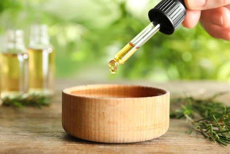 Benefits of Green Tea Liquid Extract