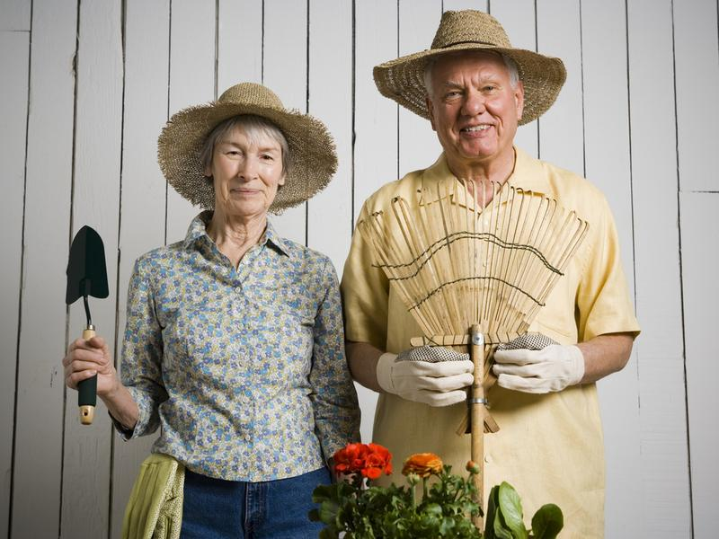Buyer's Guide Best Gardening Tools For Seniors