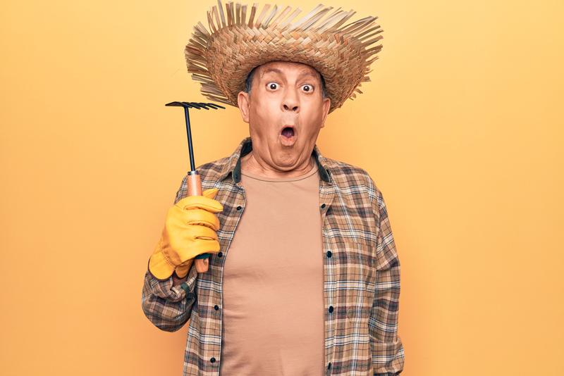 Reviews Of Best Gardening Tools For Senior