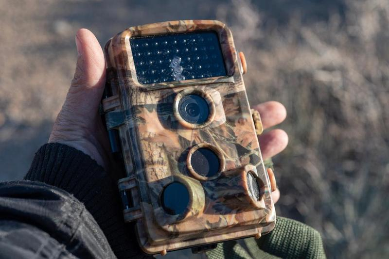 Top 11 Best Trail Cameras To Buy