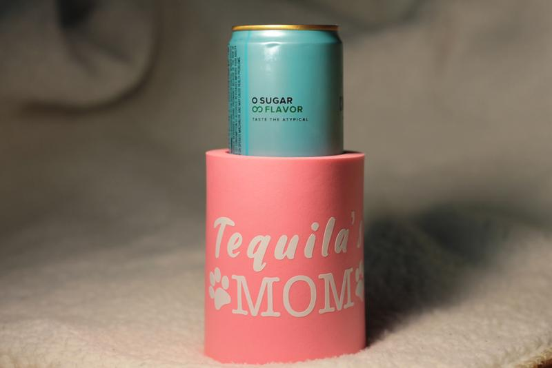 Best Insulated Can Coolers And Koozies